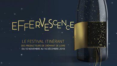 """Photo de """"Effervescence"""" du 10 novembre au 16 décembre 2018"""
