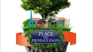 Photo de Paris Fête la récolte du Pruneau d'Agen !